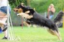 Agi-Training 01.08.2012