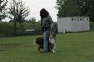Dog-Dancing-Seminar_46