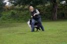 Dog-Dancing-Seminar_9