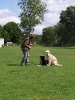 Dog-Dancing-Seminar 16.05.2009