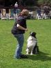 Dog-Dancing-Seminar_5
