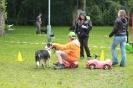 Dog-Walk DVG Reckl. 24.06.2012
