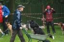 Dog-Walk_33