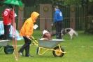 Dog-Walk_34