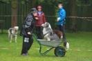 Dog-Walk_35