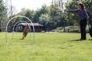 Hoopers-Agility_15