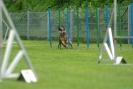 Nordrheinland-Cup_31